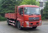 东风载货汽车,东风天锦卡车DFL1160BX1